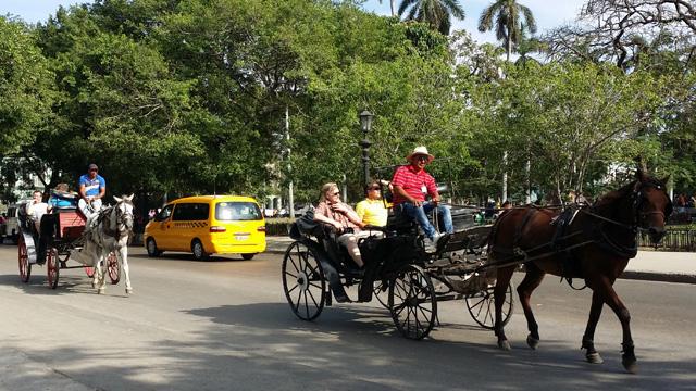 coche de caballos1