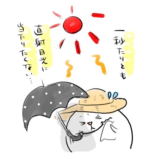 日陰グッズ1