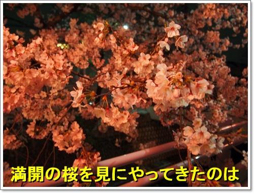 20160402_014.jpg