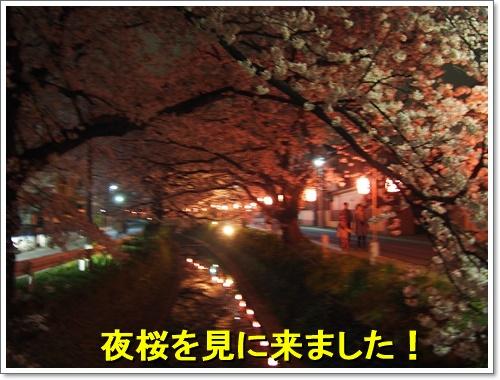 20160402_033.jpg