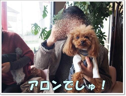 20160405_004.jpg