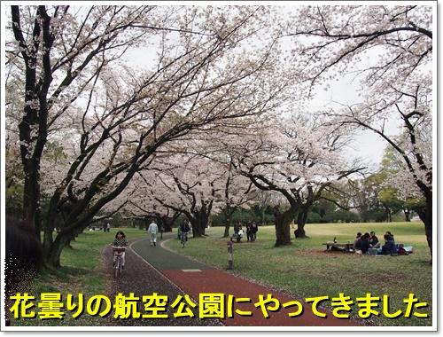 20160405_068.jpg