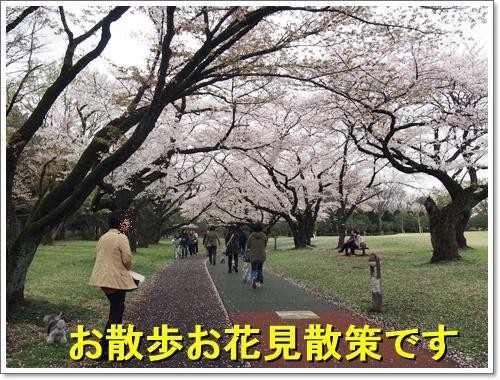 20160405_086.jpg