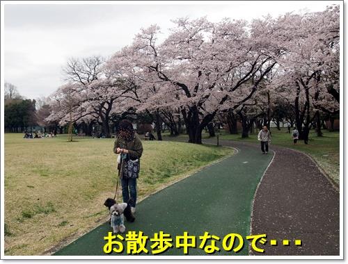 20160405_090.jpg