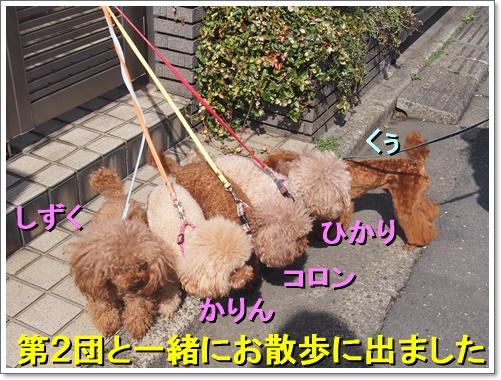 20160406_125a.jpg