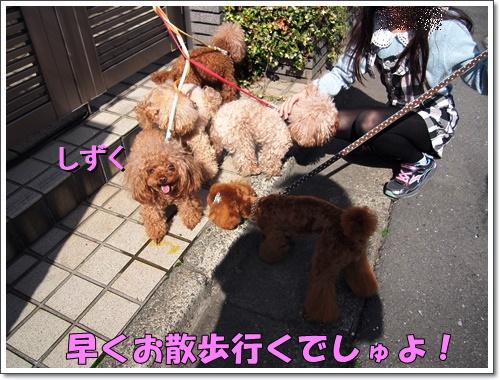 20160406_127.jpg