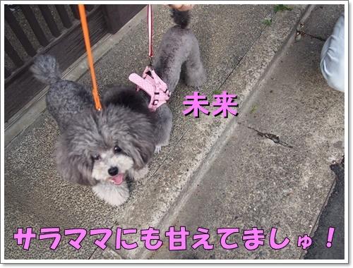 20160422_045.jpg