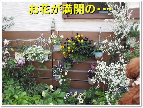 20160501_192.jpg