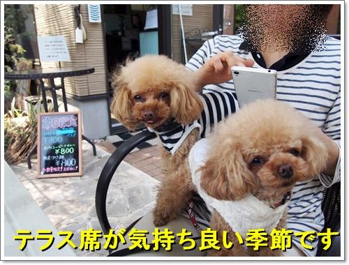 20160501_200.jpg