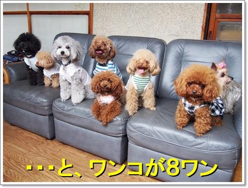 20160503_051.jpg