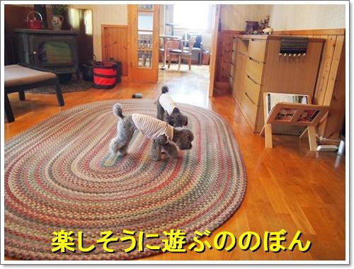 20160514_177.jpg