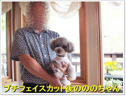 20160514_216.jpg