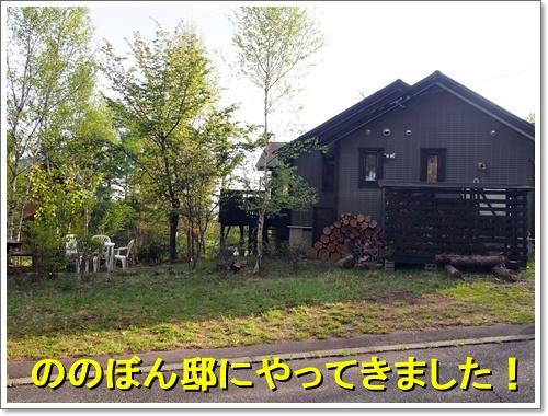 20160514_256.jpg