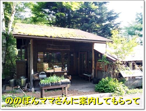 20160514_268.jpg