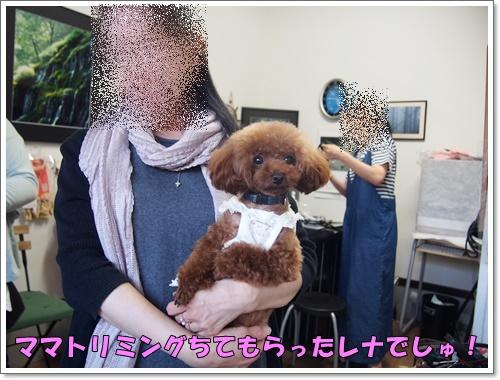 20160703_135.jpg