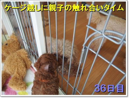 20160704_006.jpg