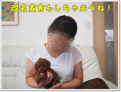 20160706_101.jpg