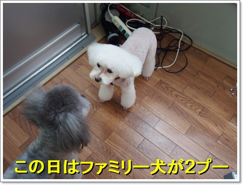 20160707_003.jpg