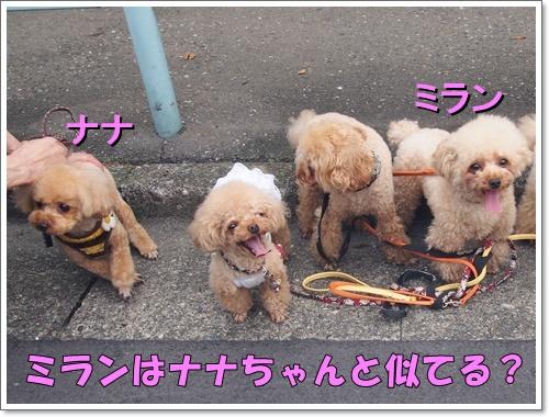 20160717_147.jpg
