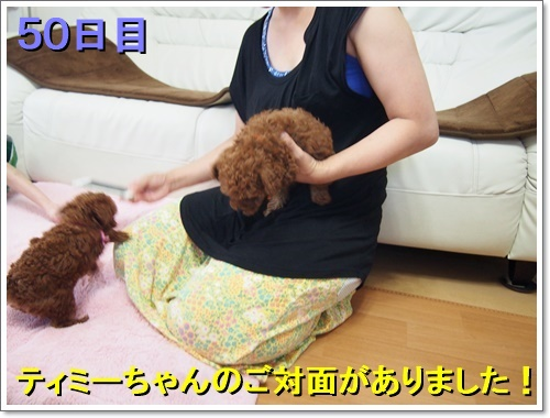20160718_002_01.jpg