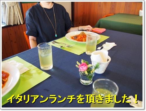 20160804_133.jpg