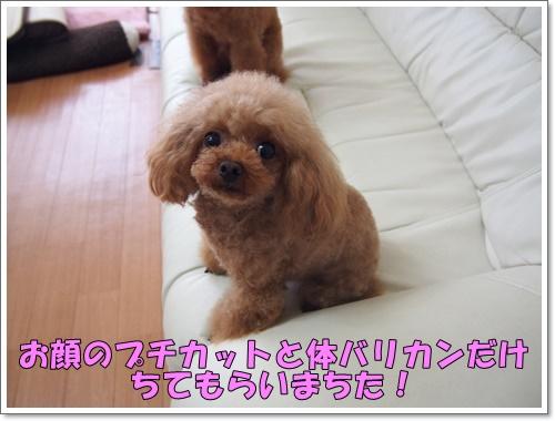 20160814_052.jpg