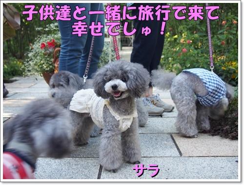 20160903_101.jpg