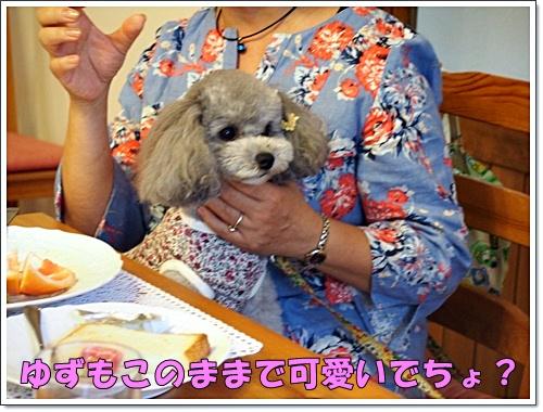 20160904_302.jpg