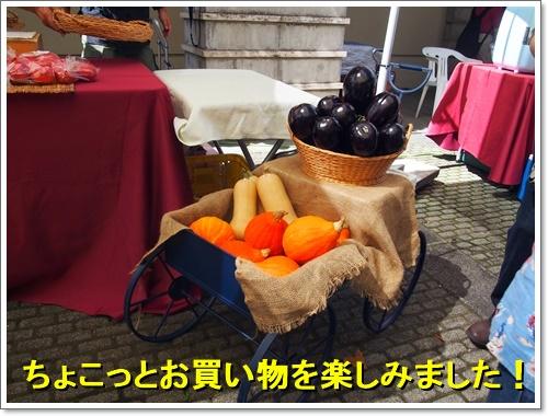 20160904_366.jpg