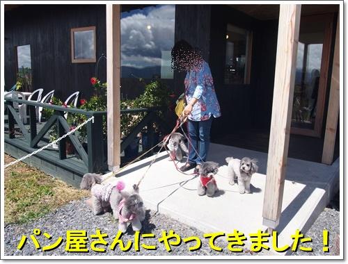 20160904_374.jpg