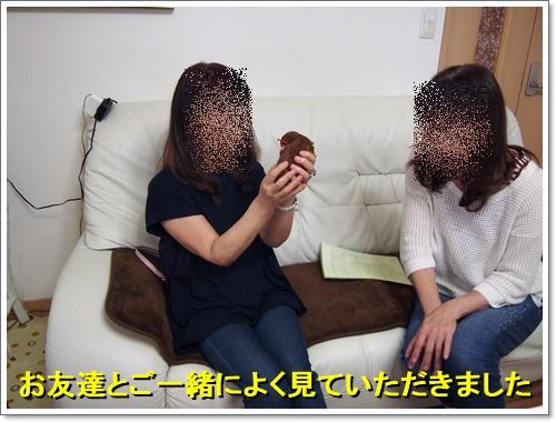20160916_018.jpg