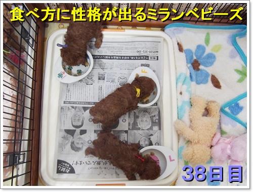 20161003_006.jpg