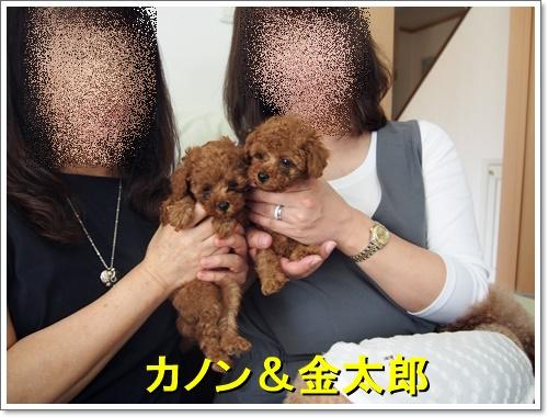 20161007_137.jpg