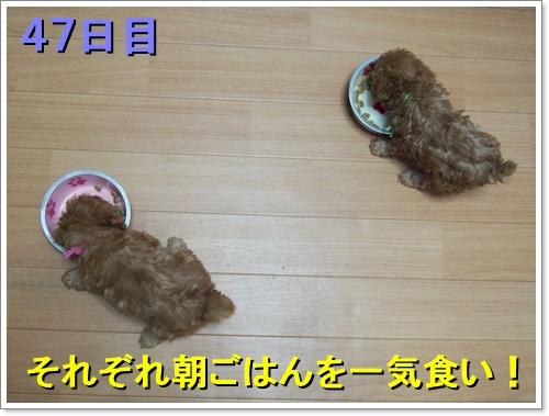 20161008_001.jpg