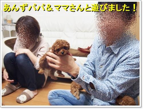 20161008_091.jpg