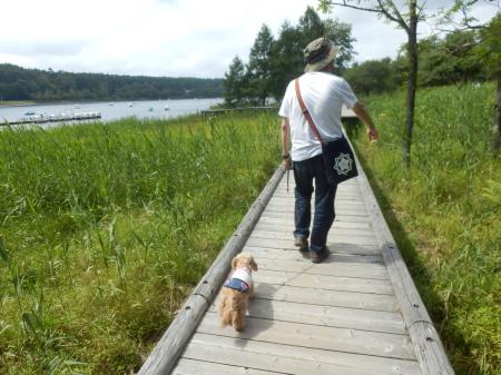 女神湖お散歩