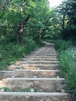 階段ずっと