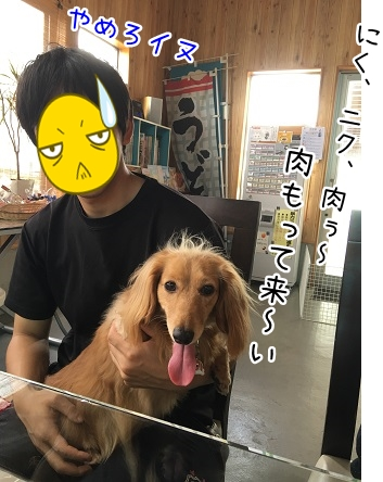 kinako5403.jpg