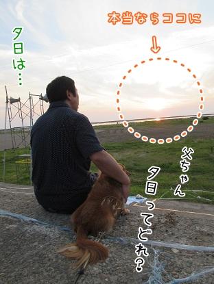 kinako5411.jpg