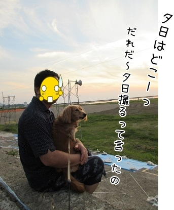 kinako5412.jpg