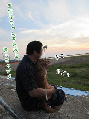 kinako5413.jpg