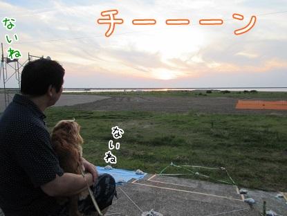 kinako5414.jpg