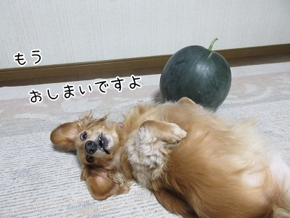 kinako5432.jpg
