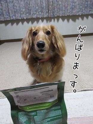 kinako5470.jpg