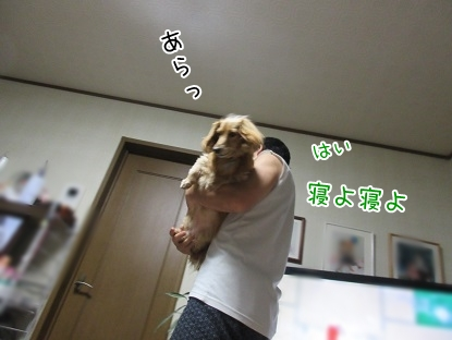 kinako5496.jpg