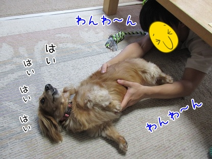 kinako5534.jpg