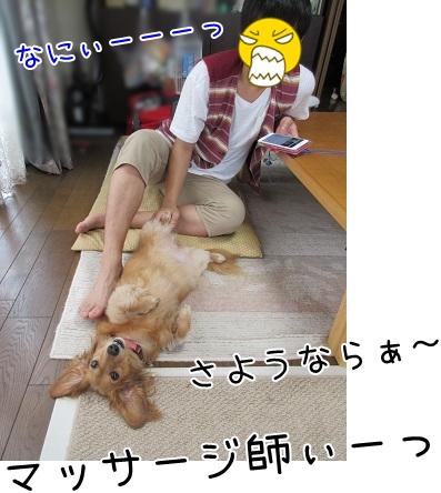 kinako5553.jpg