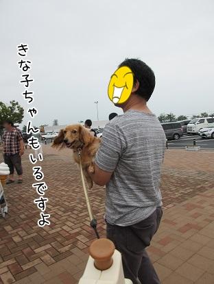 kinako5556.jpg