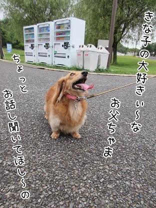 kinako5567.jpg