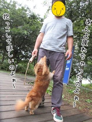 kinako5568.jpg